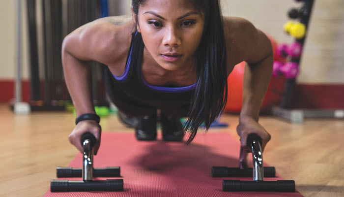 Pushup Stands