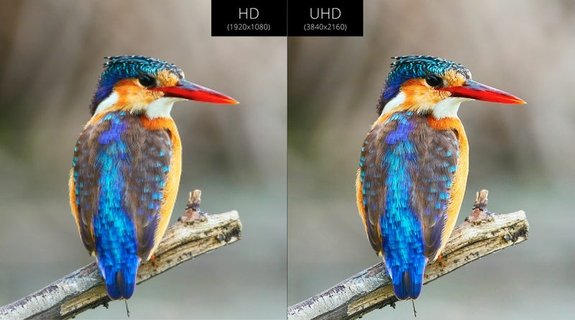 Discover Ultra HD Picture Quality with Pixel Plus Ultra HD